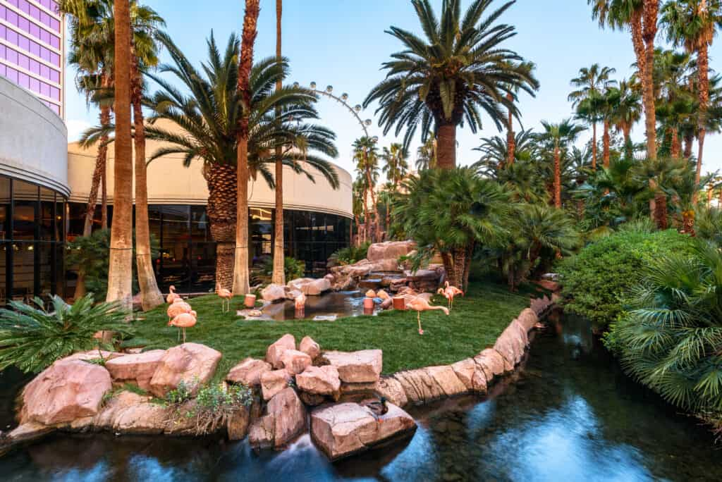 Wildlife Habitat at Flamingo Las Vegas
