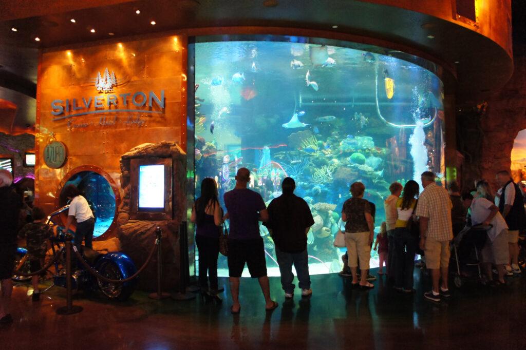 Large fish tank at Silverton Las Vegas