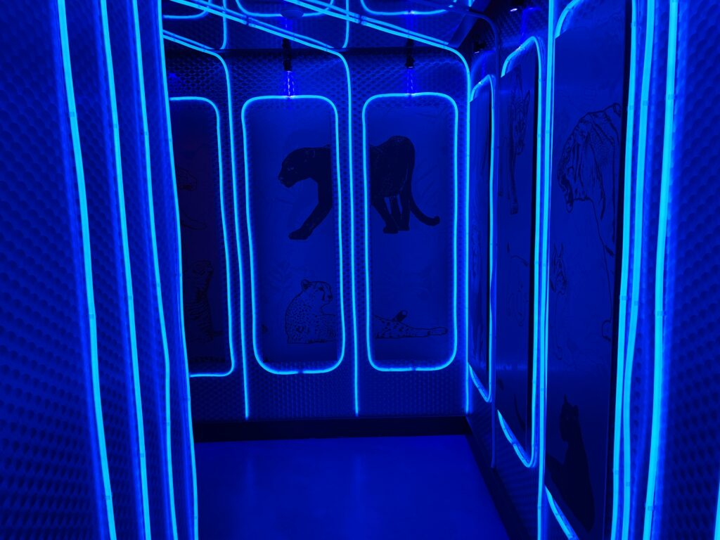 Illuminated hallway to the Men's Bathroom