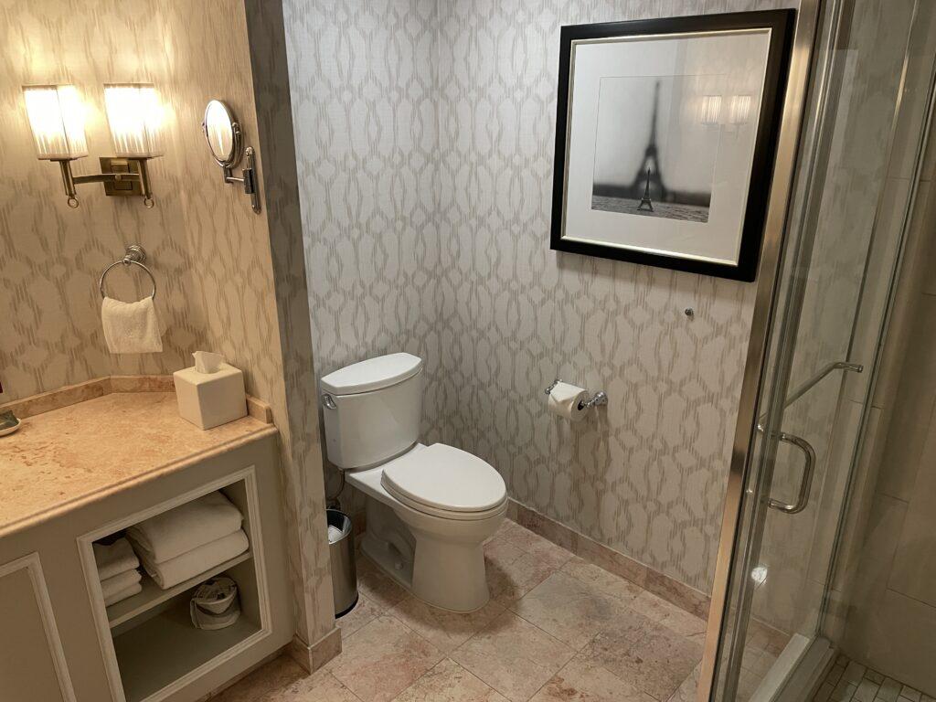 Toilet in Burgundy Room bathroom